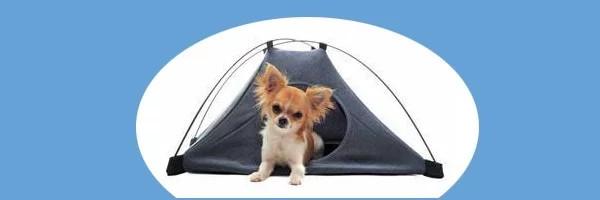 Liste des campings avec animaux acceptés