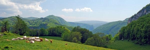 Camping en Rhône-Alpes