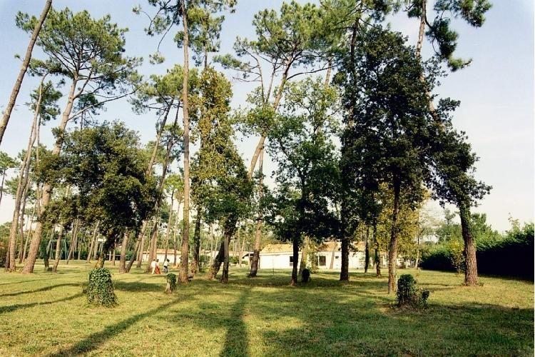 Camping Sous les pins - Vue du camping