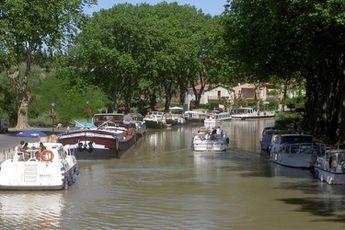 Camping Domaine de Sainte-Veziane - Languedoc-Roussillon - 2