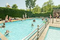 Camping alquiler Delftse Hout