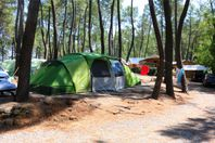 Le Bois Simonet, Pitch (rates for 2 people)