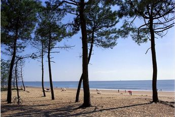 Camping Les Pins - Poitou-Charentes