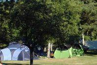 Camping Domaine du Lac de Miel, Stellplatz (Preis für 2 Personen)