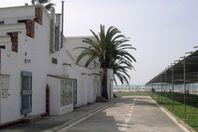 Mar De Cunit, Cunit