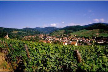 Camping du Staedly - Alsace - 3