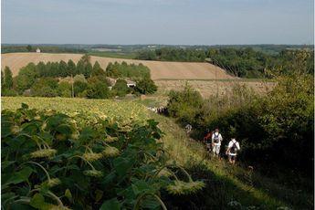 Camping Moulin Du Périé - Aquitaine - 2