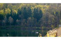 Camping Vermietung Campingplatz Eckmann
