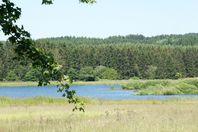 Campsite rental Campingplatz Jungferweiher