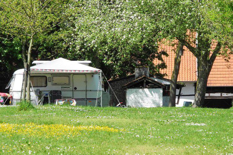 Vakantie Boerderij Bruisterbosch - Vue du camping