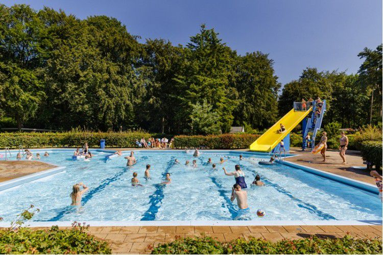 Camping Grote Bos - Piscine