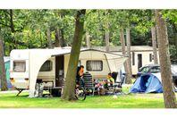 Camping Vermietung Oostappen Vakantiepark Arnhem