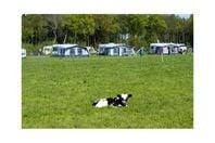 Camping Nieuwhof, Terschuur