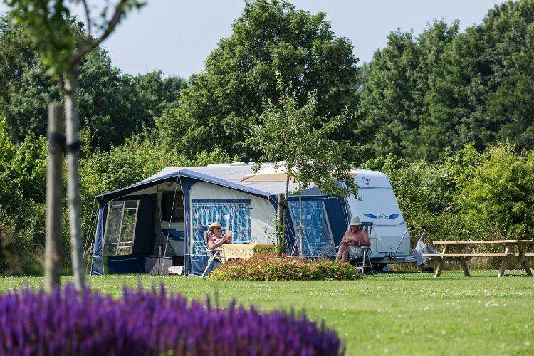 Camping Camping De Veenhoop - Ruime plaatsen