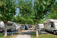 Campeggio affitto International Riccione Camping Village