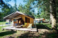 Huttopia Oléron Les Pins, Tente Toile et Bois