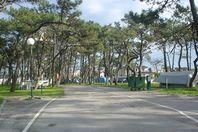 Camping alquiler Praia da Barra