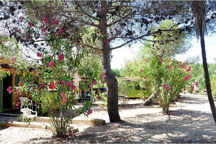 Camping Villaggio Sos Flores - Vue du camping