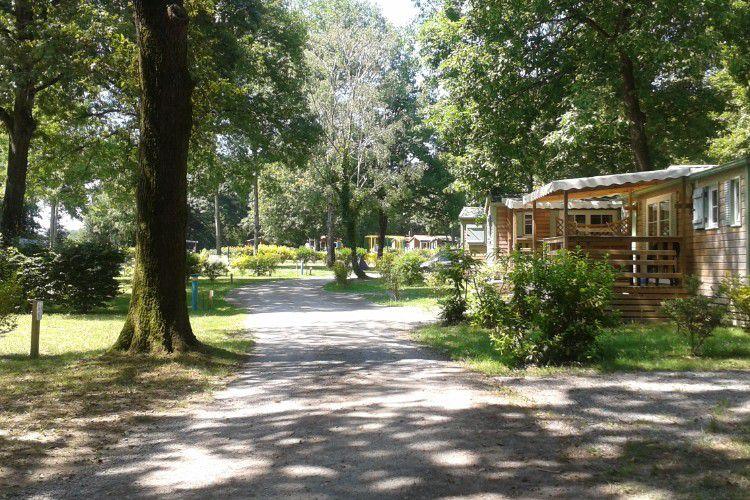 Camping La Tricherie - 5