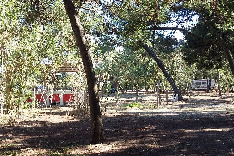 Camping Europa Beach - Emplacement