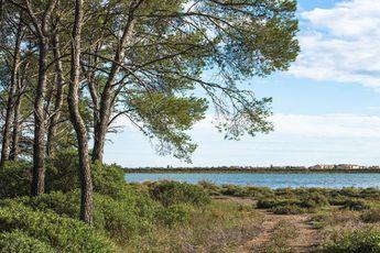 Campeggio Marin Palm - Linguadoca-Rossiglione