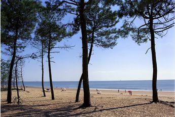Camping Le Sorlut - Poitou-Charentes - 4