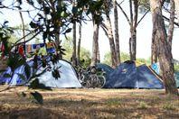 Castell Park, Emplacement Tente (Tarif 2 personnes)