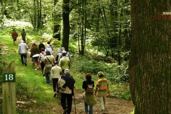 Camping Camping de Pont Calleck - Bretagne