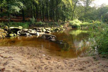 Camping Camping de Pont Calleck - Bretagne - 3