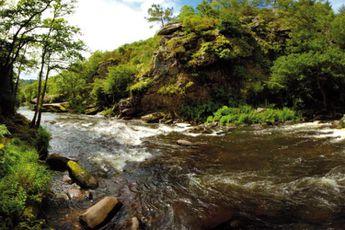 Camping Camping de Pont Calleck - Bretagne - 4