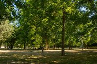 Location camping Campeggio Almoetia