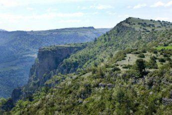 Camping Les Terrasses Du Lac - Languedoc-Roussillon - 2