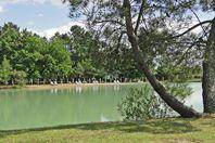 Location camping Chêne Du Lac