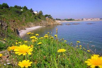 Languedoc Roussillon