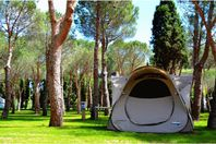 Sant Miquel, Pitch (rates for 2 people)