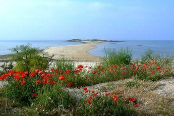 Camping La Grande Métairie - Brittany - 3