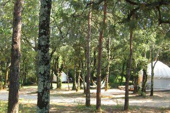 Camping Mille Étoiles - Ansicht Campingplatz