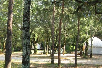 Camping Mille Étoiles - Vue du camping